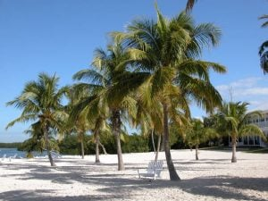 One of the beaches in South Florida