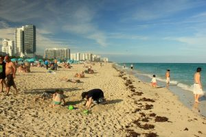 Miami beach is one of many great free things to do in Miami