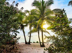 A beautiful Miami beach.