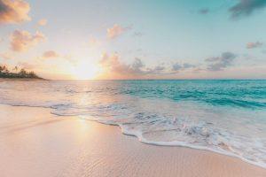 organize your move to Palm Beach County- a beach