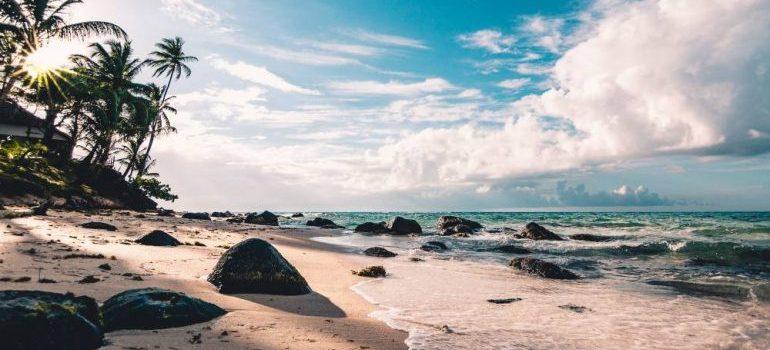 beautiful beach in Hollywood Florida