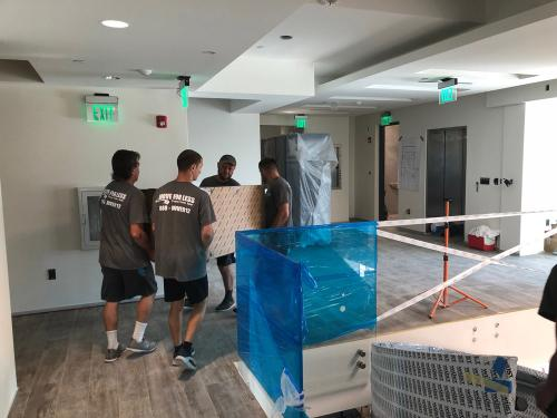 Teamwork of our Miami movers is what makes us the best.